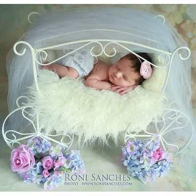 Carruagem Acessórios Fotografia Newborn, Decoração Festas - R$ 143,90 no MercadoLivre
