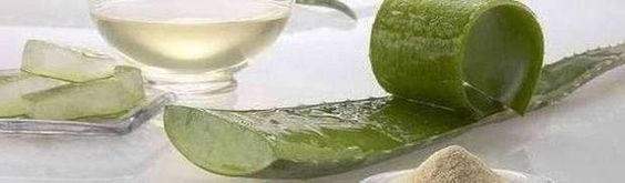 Health Benefits of Aloe Vera: add Alo-Vera to your smoothies!! excellent natural medicine for cancer & many more preventable sicknesses
