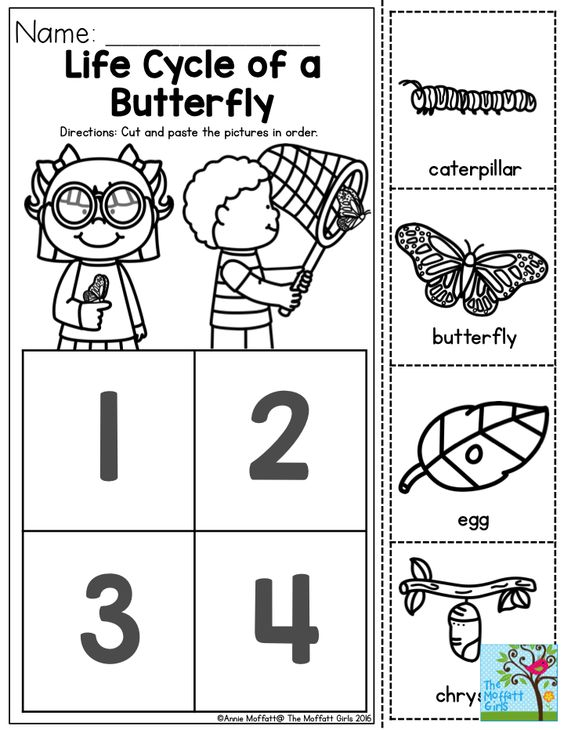 life cycle of a butterfly you can teach the basic concepts of metamorphosis to children as. Black Bedroom Furniture Sets. Home Design Ideas