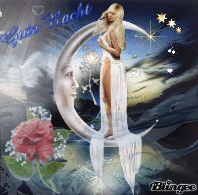 Gute Nacht meine lieben Freunde :)  /Good night my dear friends :)