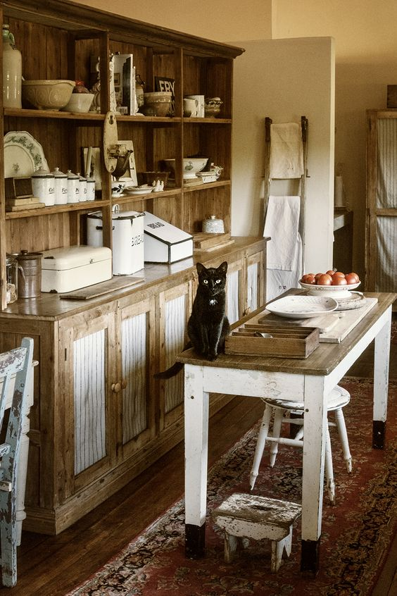 This is about perfect, just get the cat off the counter!!  Oh, and add a hanging wrought iron pan rack.