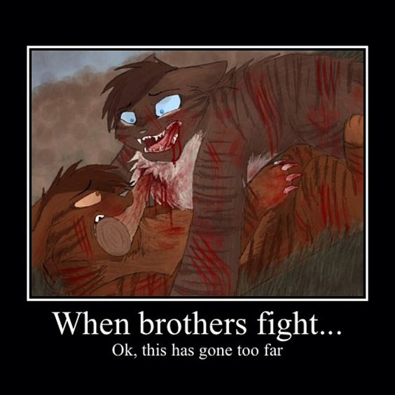 When brothers fight... Ok, this has gone too far