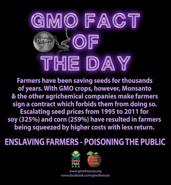 Monsanto,gmo,poison