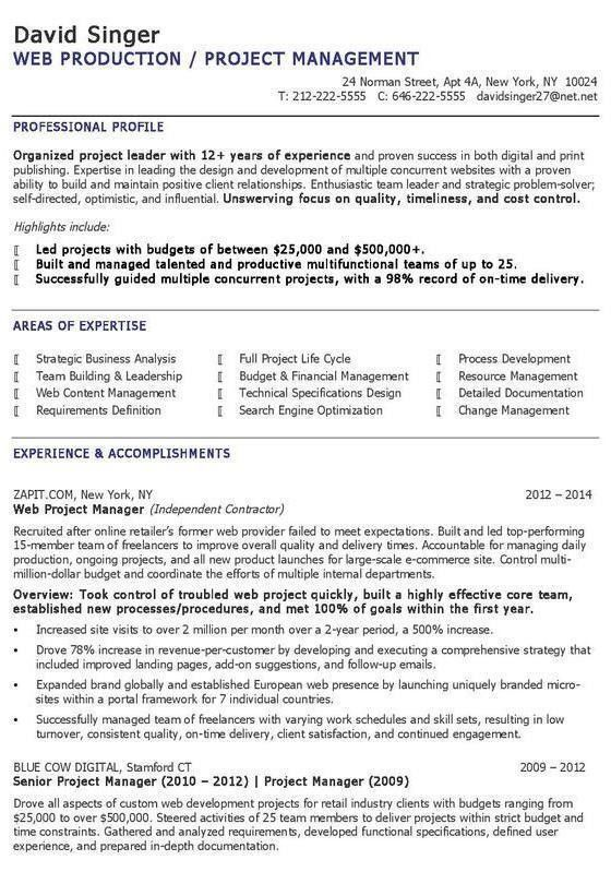 The 10 Best Digital Marketing Cv Resume Examples Project Manager Resume Infographic Resume Project Management