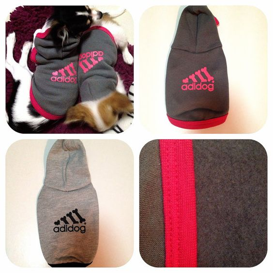 How cute would Bent look in an adidas hoodie!?!? Dog Clothing Sweater and Goods for Small Dog by ...