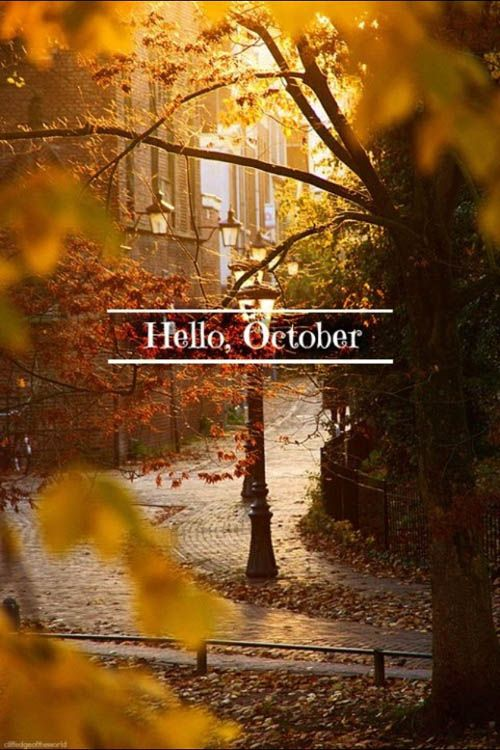 {welcome october ...}: