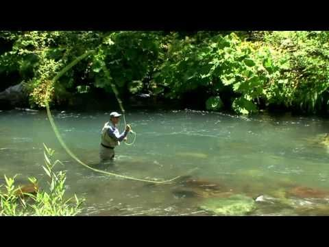 Pin On Fly Casting