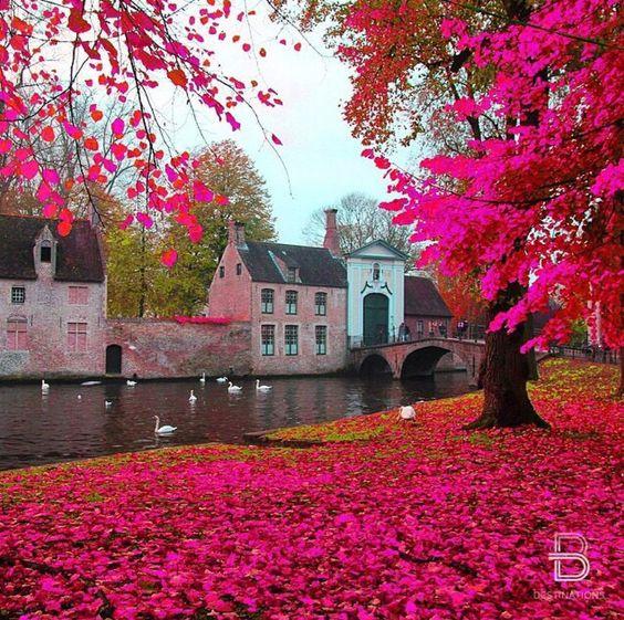 Les 50 destinations à voir avant de mourir : Bruges, Belgique: