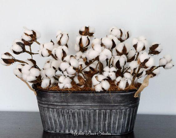 Cotton Boll Centerpiece Farmhouse Decor by WhiteDoorStudios
