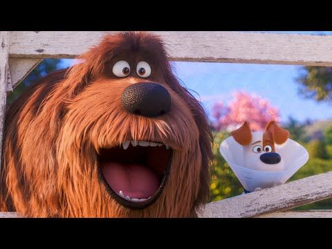 The Secret Life Of Pets 2 9 Minutes Trailer 2019 Youtube Secret Life Of Pets Secret Life The Secret