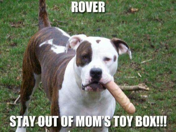 Bone...