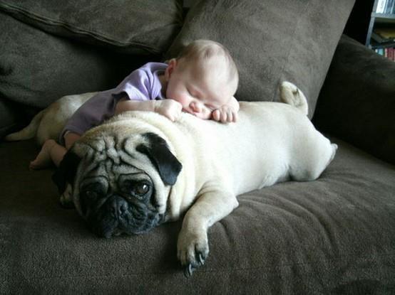 cushion of purity  :)