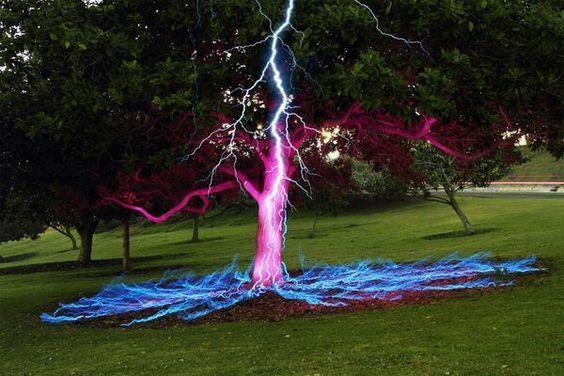 Imagen de larga exposición de un rayo golpeando un árbol. Crédito Darren Pearson. pic.twitter.com/np6Lr8SpsT