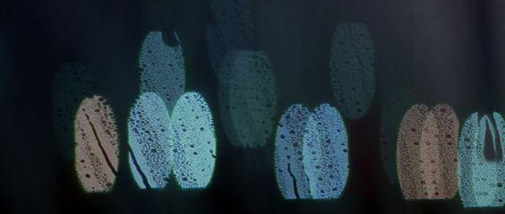Transcendence   FilmGrab