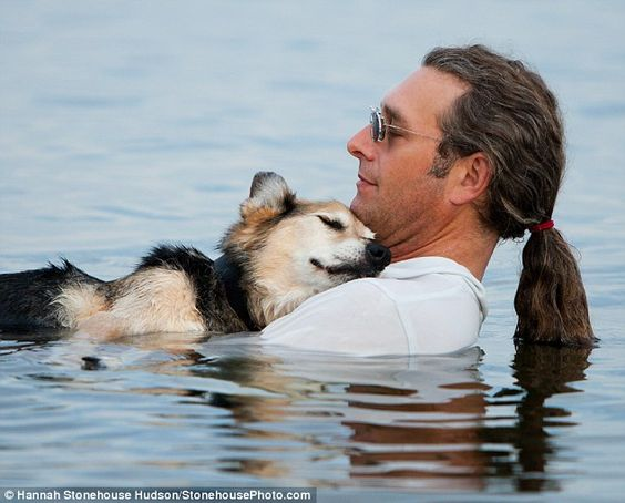 Owner takes his 19 year old dog Schoep into the lake each evening to lull him to sleep to ease his arthritis ...That is the cutest thing I've ever heard.