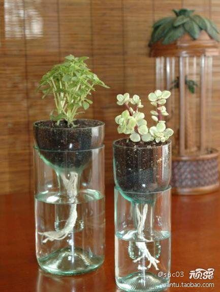 DIY: Crafty Stuffin S, Gardening Info, Glass Bottles, Seeds, Diy, Old Bottles, Cut Glass