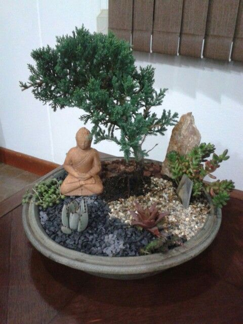 Jard n zen miniatura tiny garden bonsay air plants terrarium bonsai pinterest gardens and zen Jardin japonais bonsai