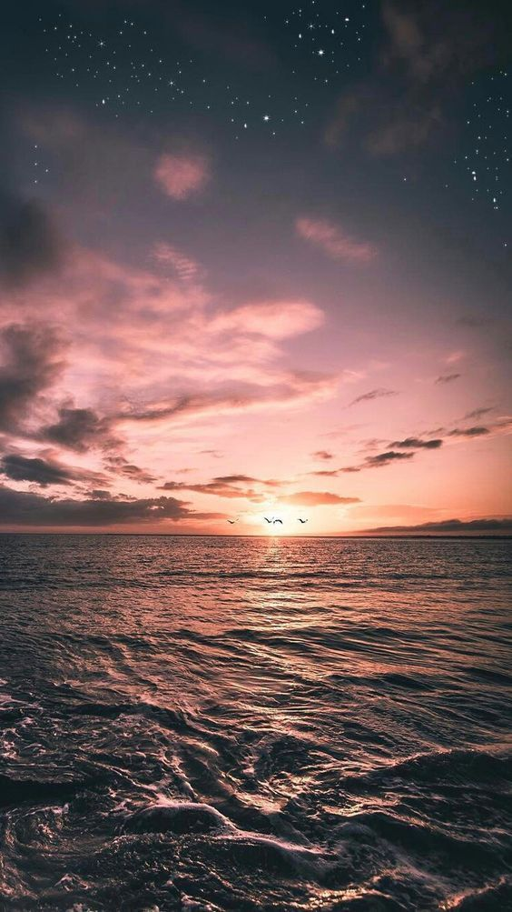 Konto Gesperrt Taivalchr Hunde Lieben Tiere Haustiere Phone Hintergrund In 2020 Sunset Wallpaper Pretty Wallpapers Sky Aesthetic