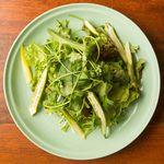カンテ・グランデ - 料理写真:グリーンサラダ