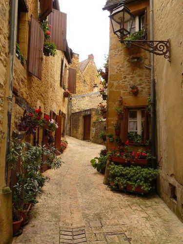 Sarlat, France. The small town from which we nearly took a straydog back home, because she kept following us. Still wondering what has become of her.
