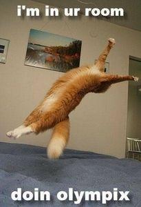 High jump :)