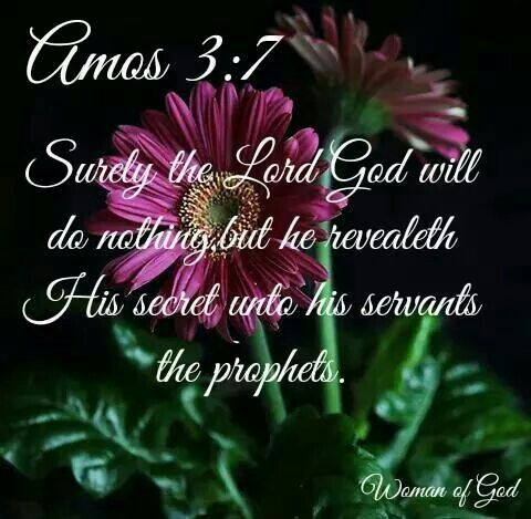 Image result for amos 3 :7