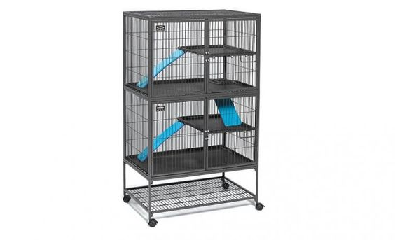 Top 6 Best Rat Cages Find The Best Home For Your Pets Ferret Cage Ferret Nation Cage Pet Ferret
