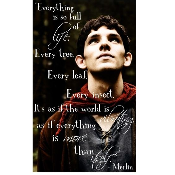 """""""Everything is so full of life. Every tree. Every leaf. Every insect. It's as if the world is vibrating, as if everything is more than itself."""" -Merlin"""