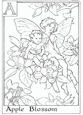 Flower Fairies Coloring And Apple Blossoms On Pinterest