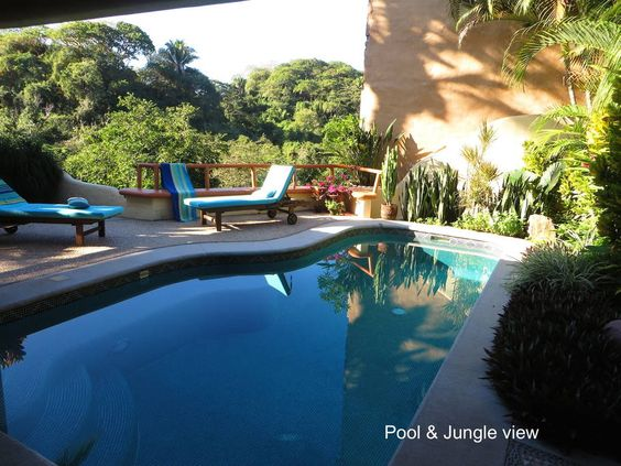 Pool and jungle view - Get $25 credit with Airbnb if you sign up with this link http://www.airbnb.com/c/groberts22