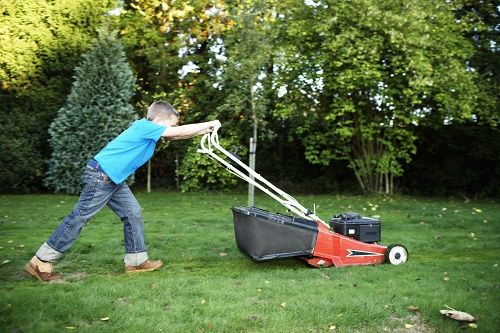 Lawn Mowers - https://www.xing.com/profile/Melanie_Forbes/activities
