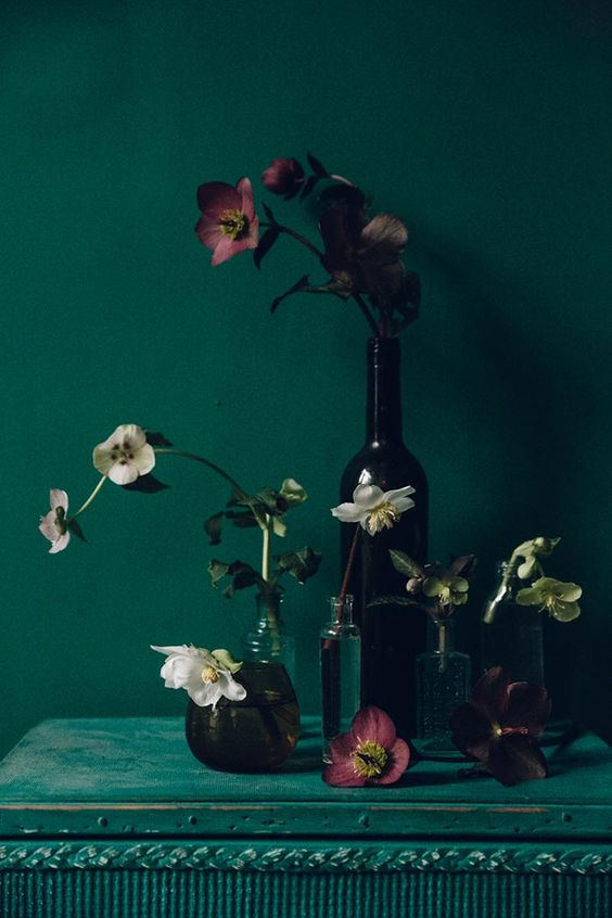 Winter Hellebores by Swallows & Damsons at Design*Sponge (Photo by India Hobson)