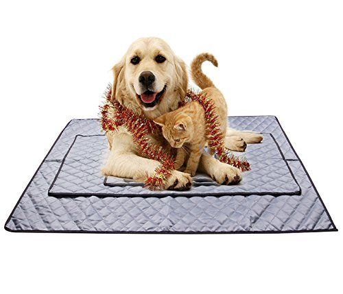 Dodoing Pets Cooling Chilly Mat Non Toxic Cool Pad Bed Liner Mattress Summer Dog Cat Heat Relief Cover Mats 105x90cm Click Im Cat Bed Cat In Heat Summer Dog