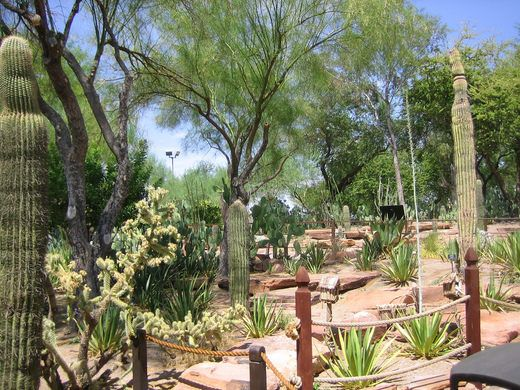 Ethel M Chocolate Factory And Botanical Cactus Gardens Las Vegas