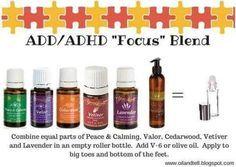 Add/Adhd ficus blend