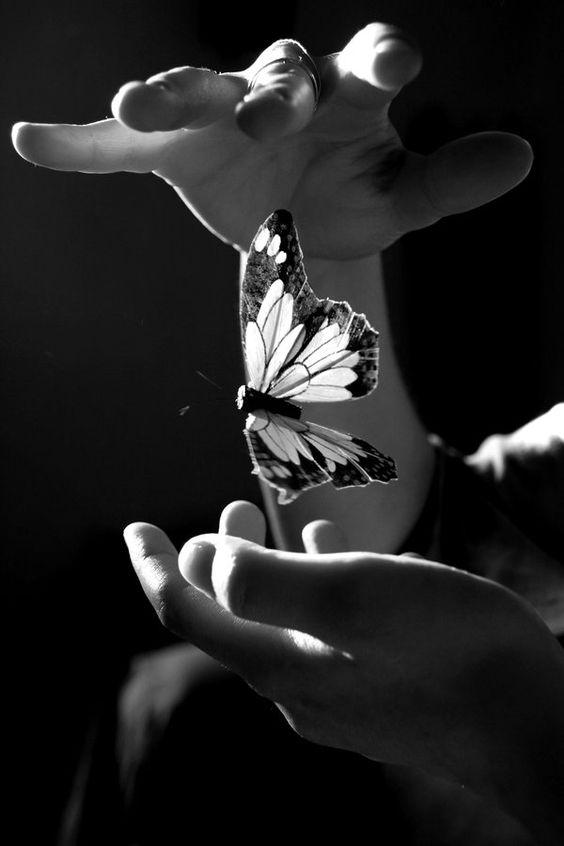, cuando llegas se llena el corazón de mariposas, de puras narraciones jubilosas, del fondo de los ojos que me entregas.