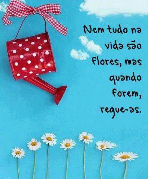 Nem tudo na #vida são #flores, mas quando forem, regue-as. #frases: