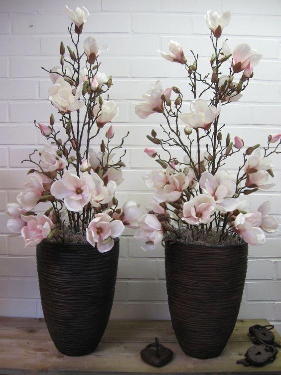 Plantas De Interior Grandes Decoracionconplantasmesas