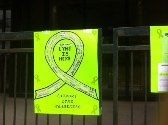 Virginia in the Worldwide Lyme Protest
