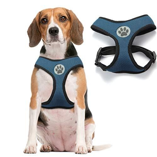 Bingpet Soft Mesh Dog Harness Pet Walking Vest Puppy Padded