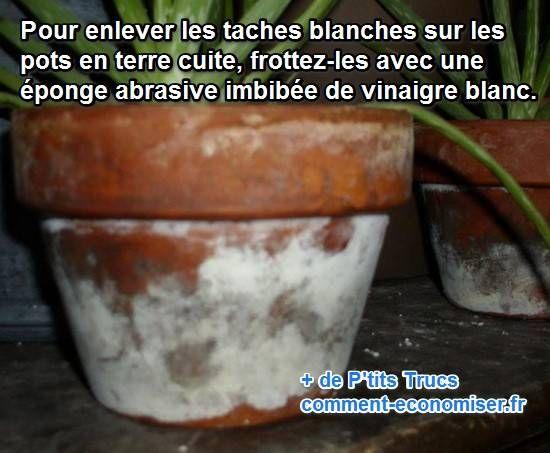 taches blanches sur les pots de fleurs : le truc simple pour s'en