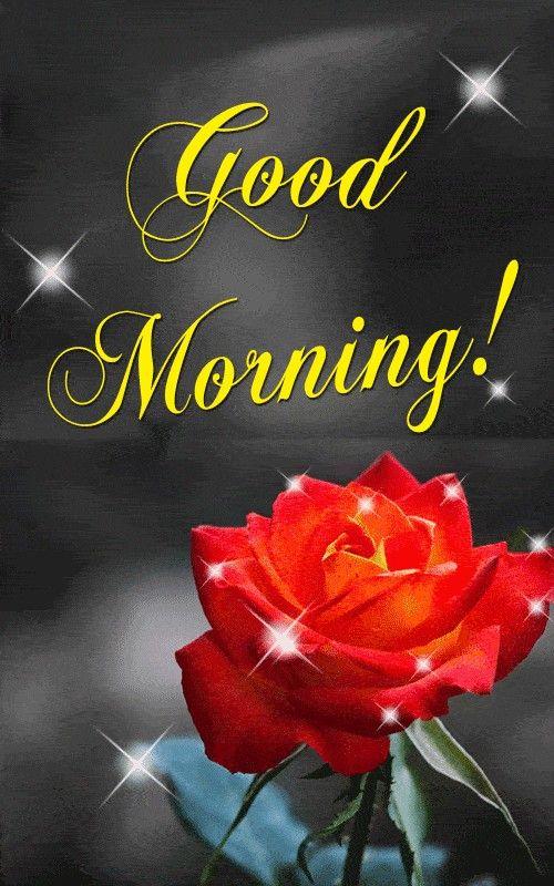 Good Morning   Prayer   Good morning roses, Good morning gif