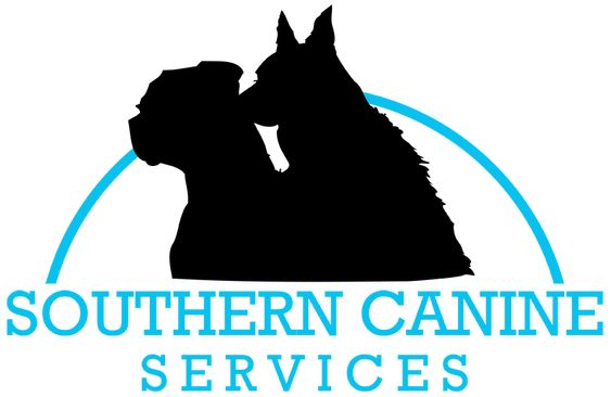 In Kennel Training Lafayette Dog Training Southern Canine