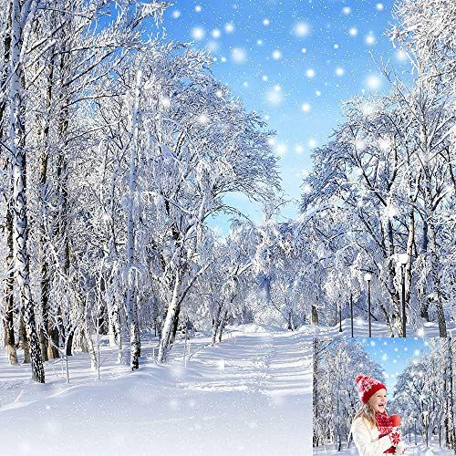 Kate 10x10ft Winter Snow Photography Background New Year Https Www Amazon Com Dp B075 Winter Snow Photography Snow Photography Background For Photography
