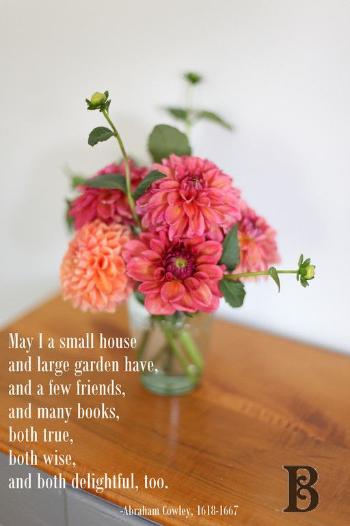 Quotes. & Dahlias.