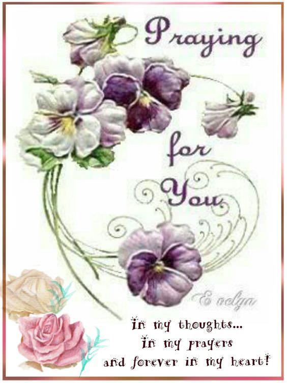 I Pray You Enough Page 81 Jokeroo Bulletin Board Good Prayers Sending Prayers Prayers For Sister