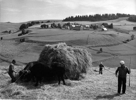 Atelier Robert Doisneau | Galeries virtuelles des photographies de Doisneau - L'Auvergne: