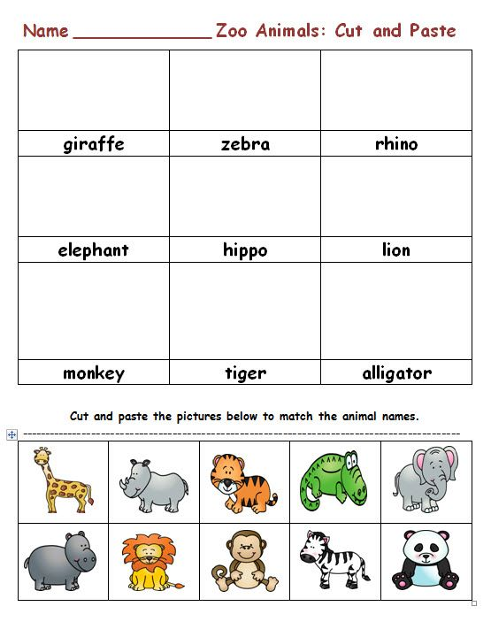 Z is for Zoo PreK  Kindergarten Worksheet  Lesson Planet