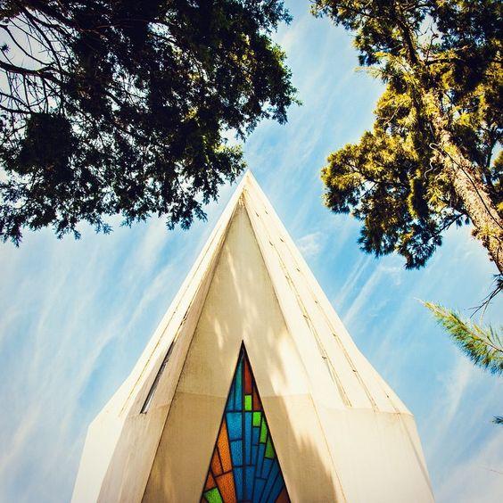 135/365 - Detalhe do templo ecumênico, emoldurado pelas árvores. Foto por…
