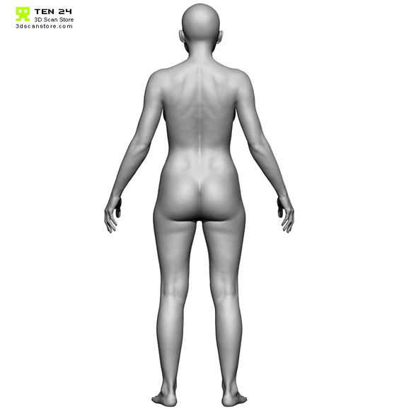 female anatomy 3D scan - symmetrical back - 3D Scan Store/Ten 24
